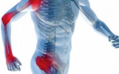 El Hígado, la Fisioterapia y el Aparato Locomotor