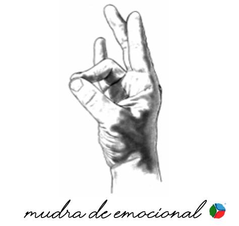 EL MUDRA DE EMOCIONAL, ¿Cuál es su significado?